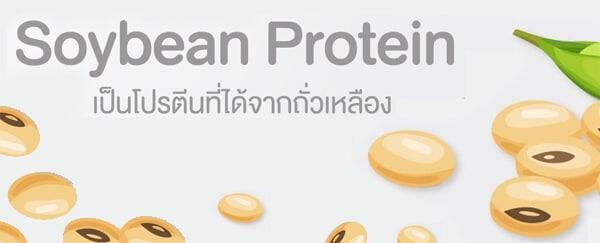 Soybean ถั่วเหลือง